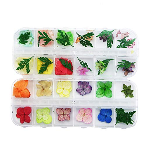 Monrocco 48Pcs Nail Art Accessories Dried Flowers,Mini Natural Real Dried FlowersNail Art DIY Flower Decorations with Box