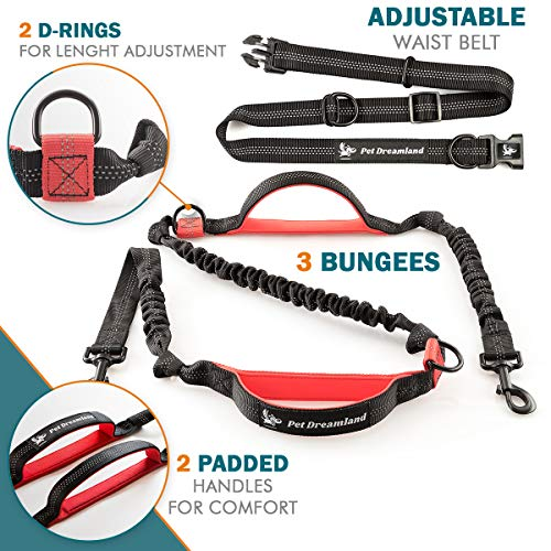 Pet Dreamland Hands Free Leash - For One/Two Medium to Large Dogs (up to 150lbs) - Running/Hiking/Dog Training - Heavy Duty Extra Long Bungee Lead - Waist Leashes for Dogs (One Large Dog, Black & Red)