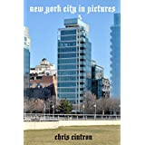 new york city in pictures