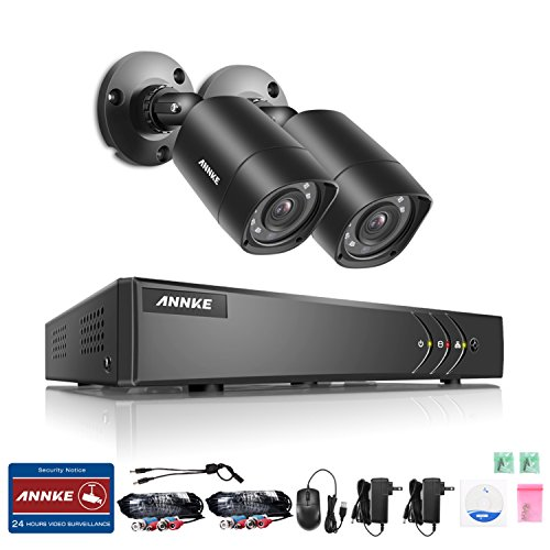 ANNKE 4CH 1080N/720P HD-TVI Security DVR Recorder System and (2) 1280TVL Outdoor Fixed Dome Cameras with IP66 Weatherproof Day/Night Vision, NO - Ir Dual Kit Dome