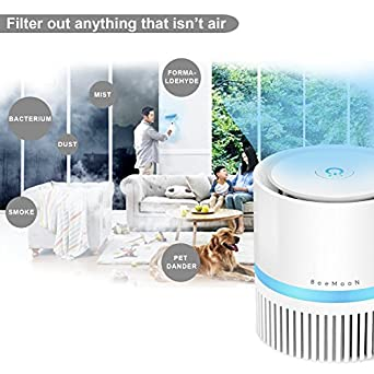 Amazon.com: Beemoon Air Purifier Filter, Compact Air Cleaner Filter: Industrial & Scientific