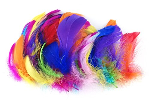 Honbay 200pcs Assorted Color Handmade Feather for DIY Craft Wedding Home Party Decorations