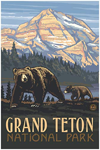 Grand Teton National Park Rockies Grizzly Bears Travel Art Print Poster by Paul A. Lanquist (24