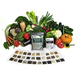 Survival Garden 15,000 Non GMO Heirloom Vegetable Seeds Survival Garden 32 Variety Pack by Open Seed Vault 7 32 Varieties of All Natural Vegetable Seeds: Non hybrid, Non gmo, Heirloom 100% Naturally Grown and Open Pollinated seeds with high Germination Rate Vegetable Growing and Seed Harvesting Guide Included with Seeds Tested for Maximum Germination and Yield.