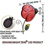 Bright Zeal Big Metal Solar Lights Yard Art