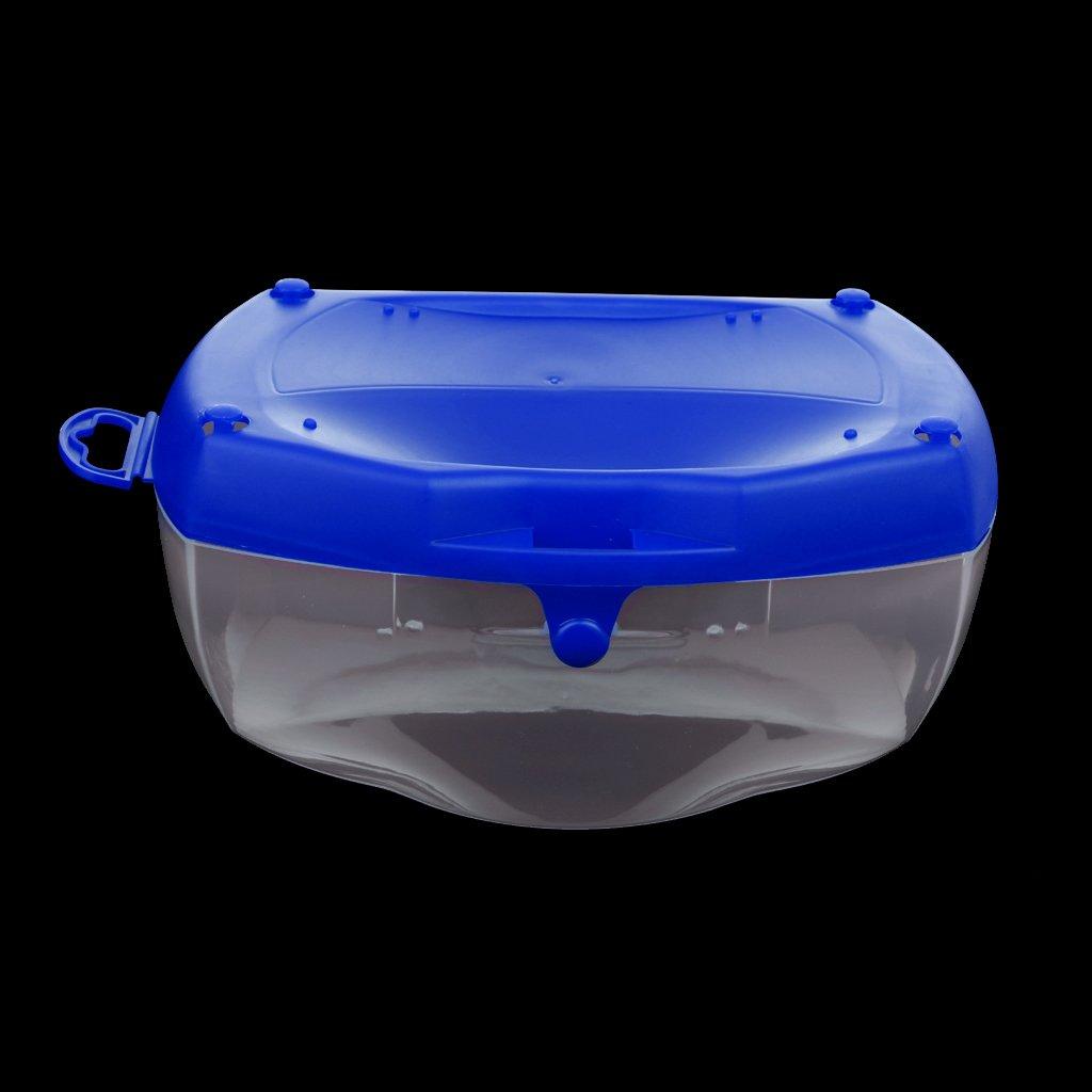 CUTICATE 2Pcs Scuba Dive Mask Snorkel Safety Glasses Case Container Storage Box