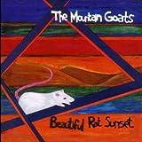Mountain Goats Zopilote Machine Amazon Com Music