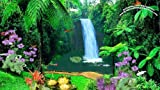 Queensland Waterfall [Download]