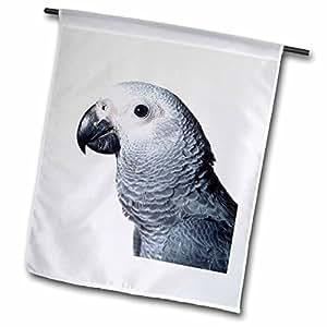 Birds - African Grey Parrot - 18 x 27 inch Garden Flag (fl_4033_2)