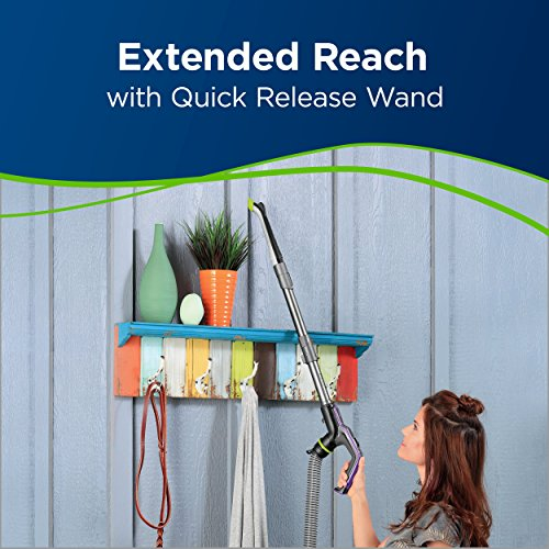 BISSELL Pet Hair Eraser Turbo Plus Upright Vacuum Cleaner,