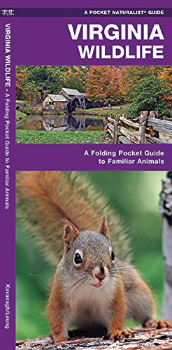 Virginia Wildlife: A Folding Pocket Guide to Familiar Species (A Pocket Naturalist Guide)