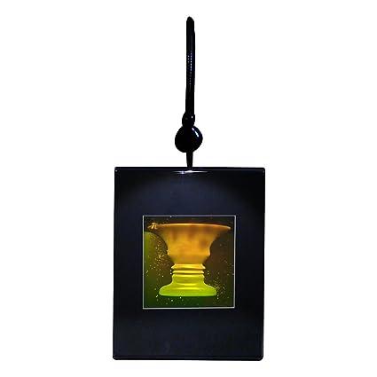 Amazon 3d Vase Face 2 Channel Hologram Picture Lighted Desk