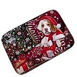 Pgojuni Cat Day Christmas Year Carpet mats Moisture Smoothing Thickness1pc 40x60CM (F)