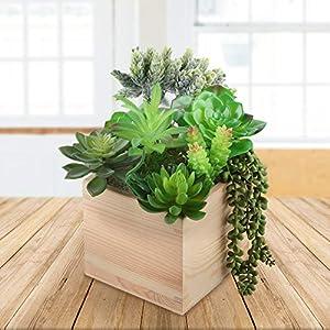 Artificial Succulent Plants Realistic Look 10 Pack 2