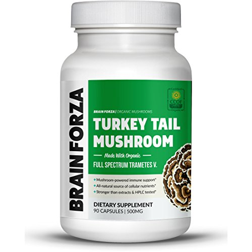 Brain Forza Organic Turkey Tail Mushroom Immune System Support, 90 Veggie Caps Review