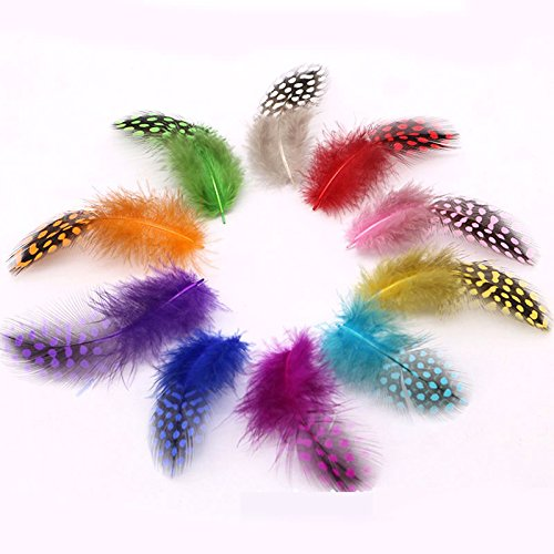 Fishing Lures - 50PCS Mixed Colors Guinea Pearl Hen Feather Spey Flies Tailing Cheeks Streamers Fly Tying Material - (Color: 50pcs Mix Colors)