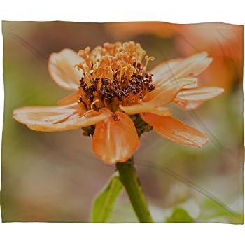 Amazon.com: Gota de Negar Designs Barbara Sherman Floral ...