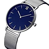 Blue Face Bracelet Clasp Life Waterproof Womens Fashion Classic Gold Geneva Quartz Stainless Steel Wrist Watch - Woaills (SILVER)