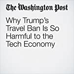 Why Trump's Travel Ban Is So Harmful to the Tech Economy | Vivek Wadhwa