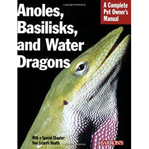 Anoles, Basilisks, and Water Dragons (Complete Pet Owner's Manual) 2