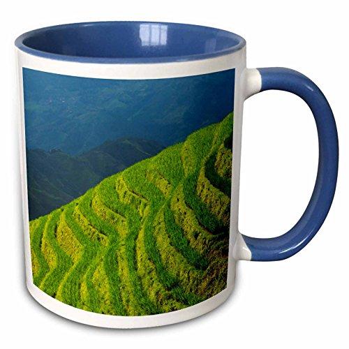 3dRose Danita Delimont - Agriculture - Rice terraces in the mountain, Longsheng, Guangxi Province, China - 15oz Two-Tone Blue Mug (mug_225544_11) ()