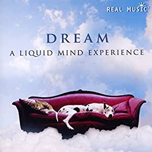 DREAM: A Liquid Mind Experience
