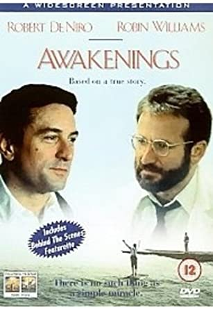 movie with robert de niro and robin williams