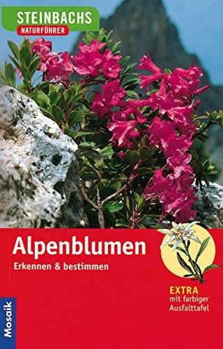 Alpenblumen: Erkennen und bestimmen