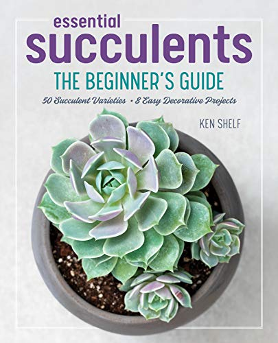 Essential Succulents: The Beginner's Guide (For Care Plants Succulent)