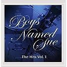 The Hits Vol 1