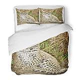 SanChic Duvet Cover Set Africa African Leopard in the Bush Animal Beautiful Beauty Big Big5 Decorative Bedding Set 2 Pillow Shams King Size