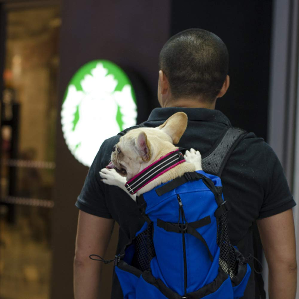 bluee lyjfzkjgs Dog Out Carrying Bag Pet Chest Backpack Backpack Travel Bag,Grey