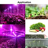LED Grow Light 100W 110V Full Spectrum Plant Light