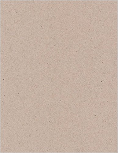 Desert Storm Smooth Cardstock, 8 1/2 x 11 Environment 80lb Cover, 25 (Environment 80 Lb Cover)