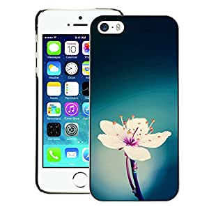 A-type Arte & diseño plástico duro Fundas Cover Cubre Hard Case Cover para iPhone 5 / 5S (Green Blue White Pink Flower Spring)