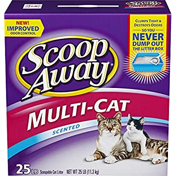 Amazon Com Scoop Away Multi Cat Formula Clumping Cat Litter 25 Lbs Pet Litter
