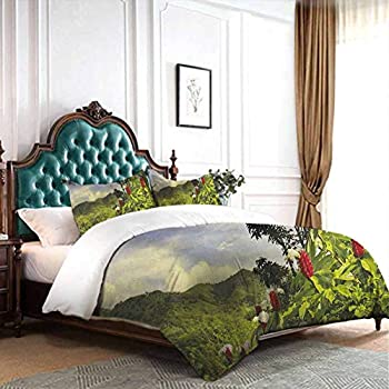 Image of dsdsgog Double Bed Forest,Path and The Waterfall Board in Croatia Cascade Garden Lake Fence Peaceful View, Brown Green 90x104 inch Three-Piece Bed Sheet Set