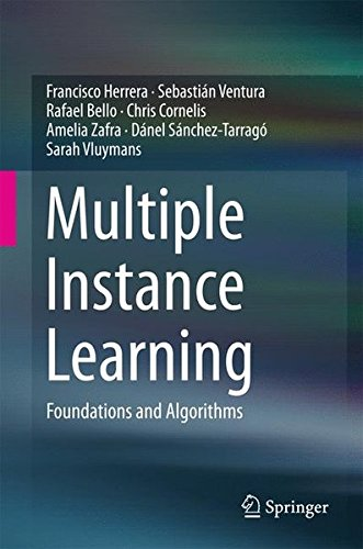 Multiple Instance Learning: Foundations And Algorithms