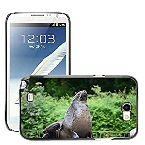 Just Phone Cases Slim Protector Hard Shell Cover Case // M00127685 Sea Lion Seal Pelts Animal // Samsung Galaxy Note 2 II N7100
