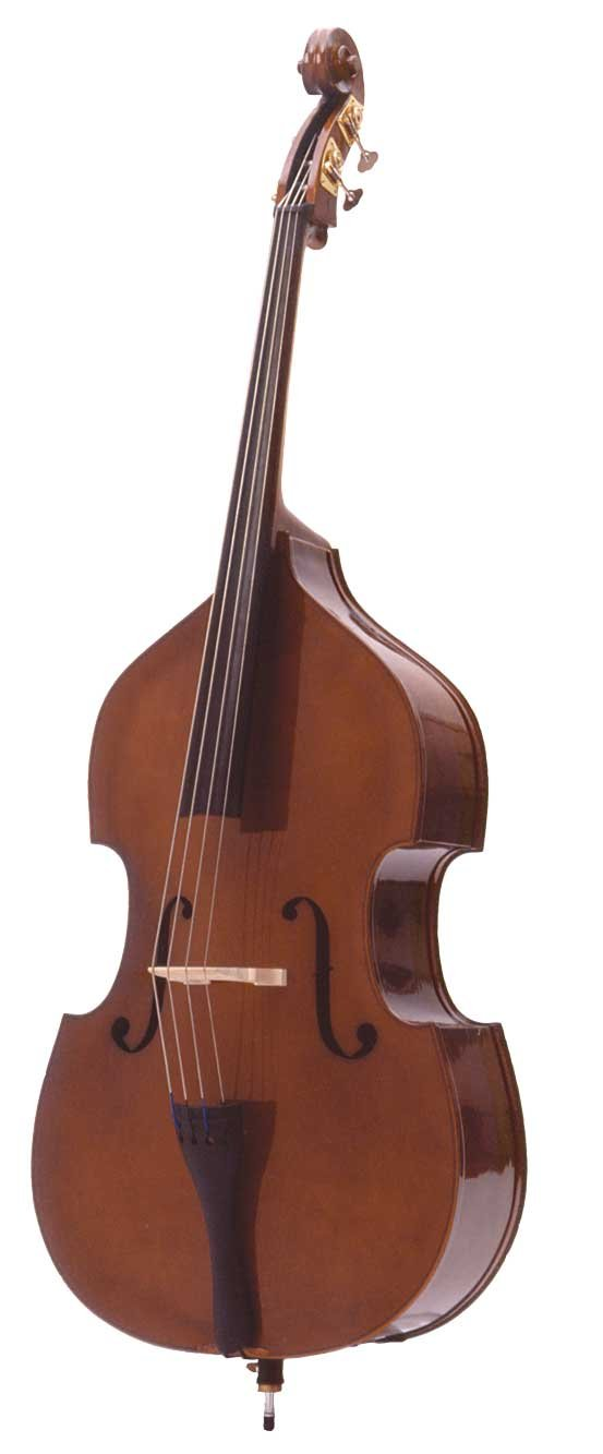 Palatino VB-009-1/2 Flamed Bass Outfit, 1/2 Size
