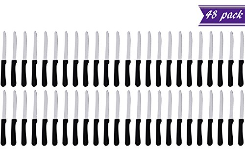 (Set of 48) 5-Inch Blade Steak Knives, Stainless Steel Rounded Serrated Blade Steak Knives with Plastic Handles for Restaurants by Tezzorio Tabletop Service