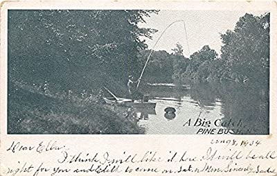Pine Bush, New York Postcard