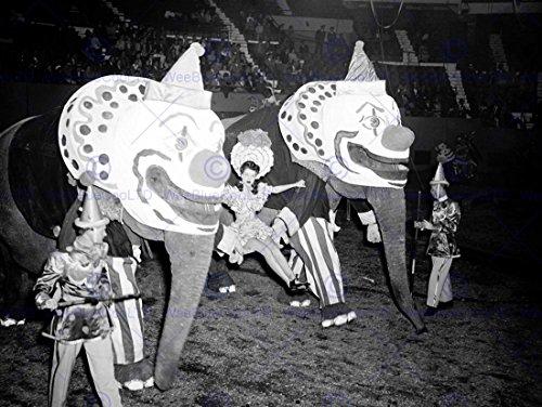 Vintage Circus Photos - 8