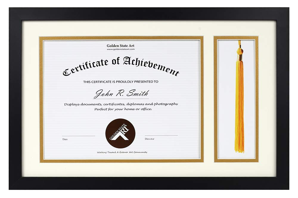 11x17.5 for 8.5x11 Document/Certificate - Black Diploma Tassel Shadow Box - Double Mat (Ivory Over Gold) - Tassel Holder - Sawtooth Hangers, Swivel Tabs, Real Glass