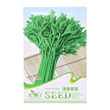 Richi 1Bag Seeds Healthy Green Vegetable Seeds Easy Grow Your Favourite (chrysanthemum coronarium)