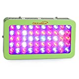 Global Star G(sg)50x6w Plus Horticulture Full Spectrum 300w Green LED Grow Light for Indoor Plant Growing,one Switch for Leaf,another for Flowering (Green) Review
