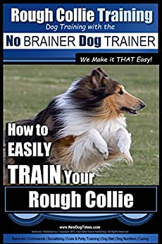 how to train your dog to speak english