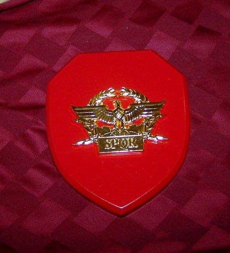 Rome Italy Pax Roman Eagle X Legion Army Award War Medal Plaque Emblem Centurian ()