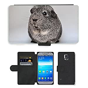 Super Stella Cell Phone Card Slot PU Leather Wallet Case // M00106021 Guinea Pig Smooth Hair Agouti Silver // Samsung Galaxy S5 S V SV i9600 (Not Fits S5 ACTIVE)