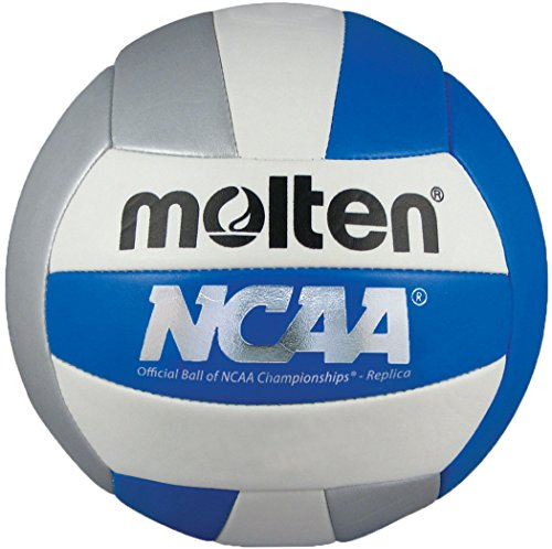 Molten Camp Volleyball (Blue/Silver/White